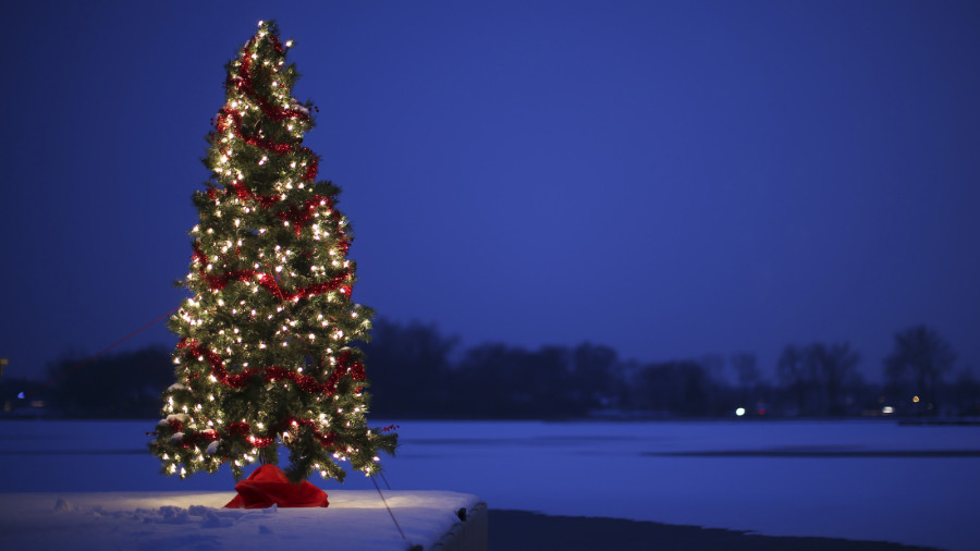 A Christmas tree sits on a dock in the snow waiting for Santa's arrival.