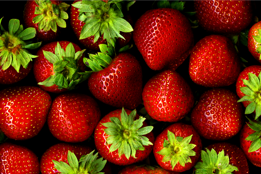 The Middletown High School FFA had a strawberry sale as a fundraiser