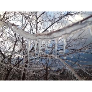 Ice storm delays education