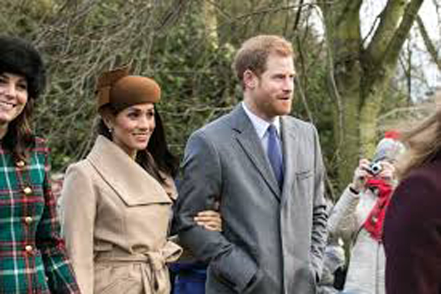 Meghan Markle and Prince Harry announced their pregnancy.