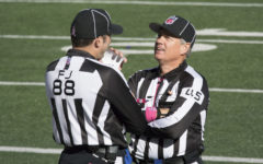 Reactions: NFL playoff referees