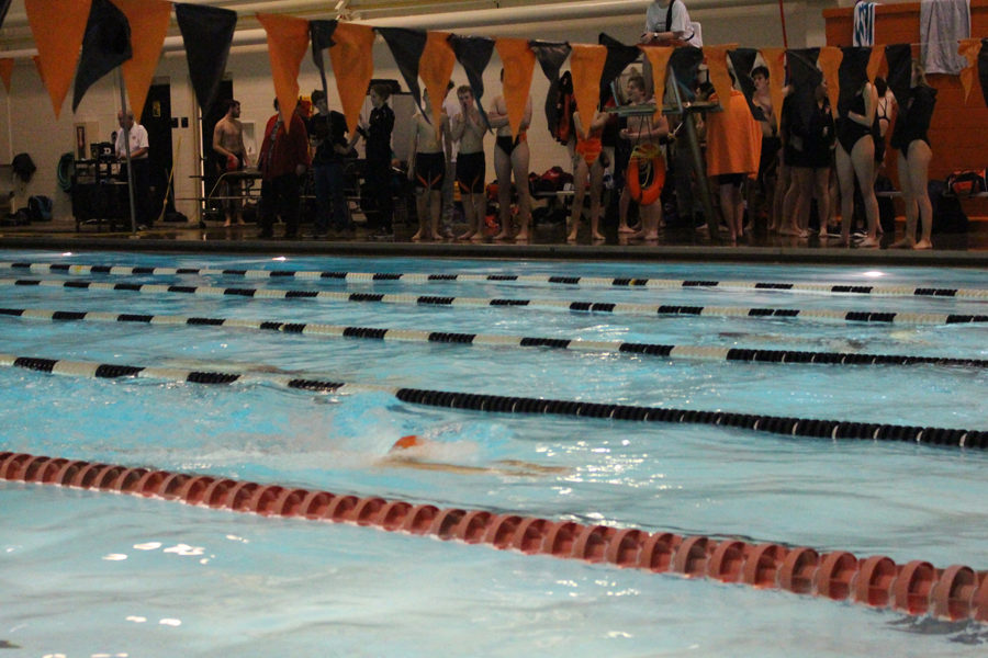 Highlights%3A+Swimming+1.9.19